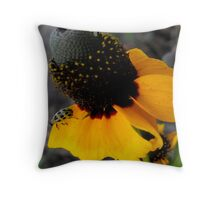 NOW CLEARED FOR TAKEOFF! Throw Pillow