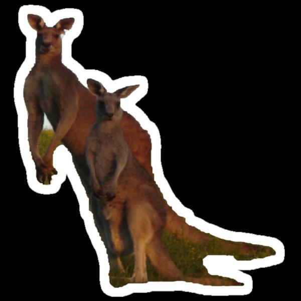 Kangaroos T by KazM