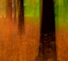 Autumn Spirits by Bruce Reardon