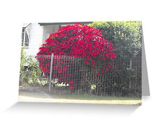 It has got to be Red. Greeting Card