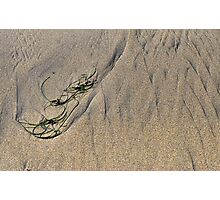 Seagrass and Ripples Photographic Print