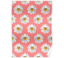 Daisies & Peaches - Daisy Pattern on Pink Poster