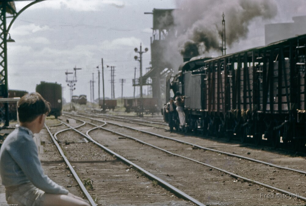 Childhood dreams of steam John on Wodonga Railway station 19601000 0000 by Fred Mitchell