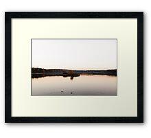 swans at lake Framed Print