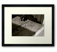 Call at Seven Framed Print