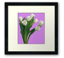 Bunch of white tulips Framed Print