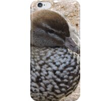 Madagascan Teal Duck iPhone Case/Skin