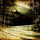 In The Vortex of The Wild by Anne  McGinn
