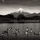 Images and Landscapes of Taranaki by Dean Mullin