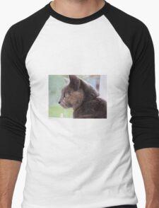 Tortoiseshell cat Men's Baseball ¾ T-Shirt