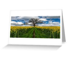 Field Of Rapeseeds Greeting Card