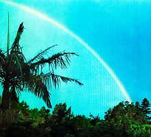 white rainbow and palm tree by Juilee  Pryor
