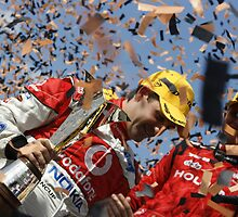 2008 V8 Supercar Champion by glenn albert