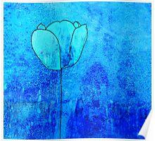 Single Tulip in Blue Poster