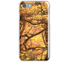 Fagus Forest iPhone Case/Skin