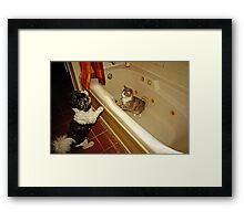 ..what are you doing in my tub..? Framed Print