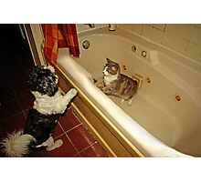 ..what are you doing in my tub..? Photographic Print