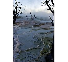 Mystery - Mammoth Hot Springs Photographic Print