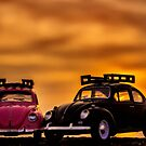 Sunset bug love  by Gary Power