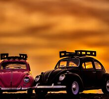 Sunset bug love  by Gary Power