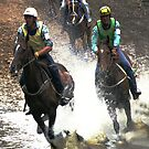Mountain Horse Racing at Noojee, Gippsland by Bev Pascoe