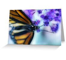 Painted Monarch Greeting Card