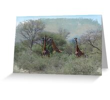 Princesses of Africa  Greeting Card