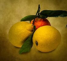 Food - Two lemons and a mandarin by luckypixel
