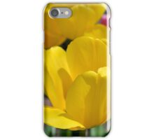 Pink and Yellow Garden Tulips iPhone Case/Skin