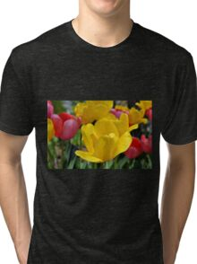 Pink and Yellow Garden Tulips Tri-blend T-Shirt