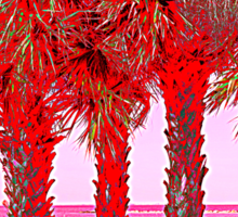 Palm Trees in Red Sticker