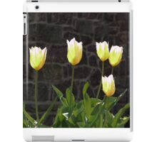 Porcelain Shades iPad Case/Skin
