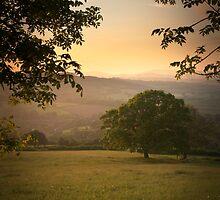 Dream State by ffotoCymru