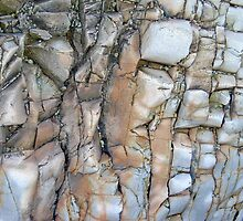 Part of stoneface on beach by Pat Duggan