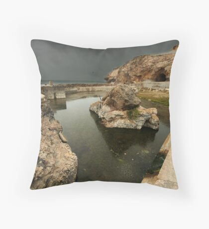 What Used To Be Throw Pillow