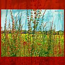 """""""Doing the Happy Dance"""" Scarf~Textured Red Borders by Susan Werby"""