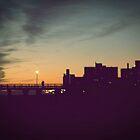 Coney Island Nights by Raven Adams
