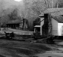Cade Cove, Tennessee by Susan C. Snider