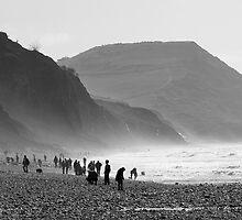 Jurassic Coast fossil hunters by John Burtoft