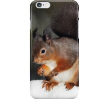Red Squirrel in snow iPhone Case/Skin