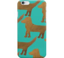 Spaniel on the green iPhone Case/Skin