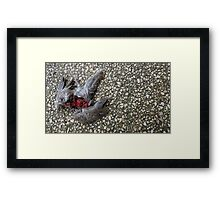 Flying Rat Bird Without Head n°4 Framed Print