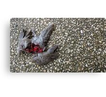 Flying Rat Bird Without Head n°4 Canvas Print