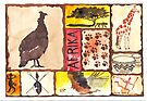 An African Collage | 'n Afrika Collage en Bosvelddrome by Maree  Clarkson