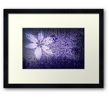 Old Wall Texture with Flower Framed Print