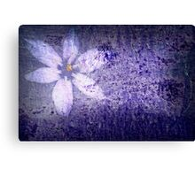 Old Wall Texture with Flower Canvas Print