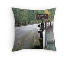 """Elwah River Bridge"" Throw Pillow"