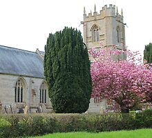 Spring At St Mary's Church, Somerset by Rumyana Whitcher