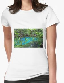 Manatee Springs Womens Fitted T-Shirt