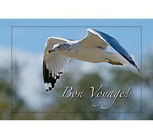 Bon Voyage Greetings Photographic Print